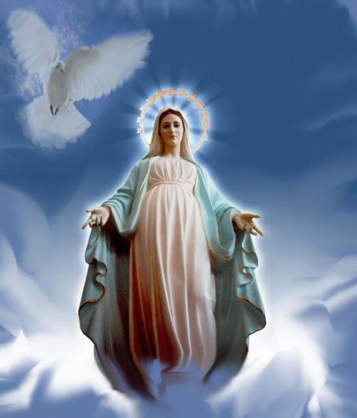 Vierge Marie couronnée d'étoiles